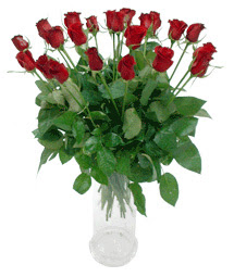 Aksaray çiçekçi telefonları  11 adet kimizi gülün ihtisami cam yada mika vazo modeli