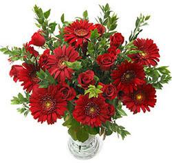 5 adet kirmizi gül 5 adet gerbera aranjmani  Aksaray hediye çiçek yolla