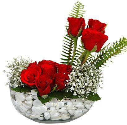 cam içerisinde 9 adet kirmizi gül  Aksaray çiçek siparişi vermek