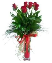 vazo içerisinde 5 kırmızı gül  Aksaray güvenli kaliteli hızlı çiçek
