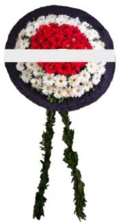 mozele çiçeği  Aksaray hediye sevgilime hediye çiçek