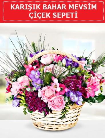 Karışık mevsim bahar çiçekleri  Aksaray ucuz çiçek gönder