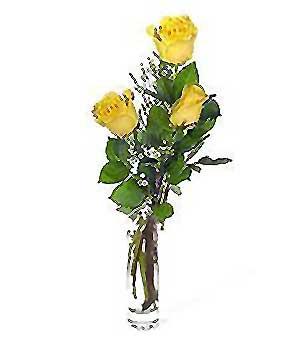 Aksaray internetten çiçek siparişi  3 adet kalite cam yada mika vazo gül