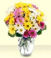 Aksaray internetten çiçek siparişi  mevsim çiçekleri mika yada cam vazo