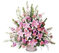 Aksaray çiçek siparişi sitesi  Tanzim mevsim çiçeklerinden çiçek modeli