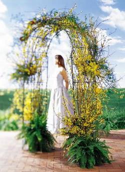 Aksaray internetten çiçek satışı  güller ve mevsim çiçegi