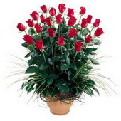 Aksaray uluslararası çiçek gönderme  10 adet kirmizi gül cam yada mika vazo