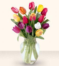 Aksaray çiçekçiler  13 adet cam yada mika vazoda laleler