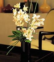 Aksaray çiçekçiler  cam yada mika vazo içerisinde dal orkide