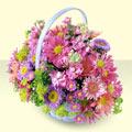Aksaray yurtiçi ve yurtdışı çiçek siparişi  bir sepet dolusu kir çiçegi  Aksaray çiçek gönderme sitemiz güvenlidir