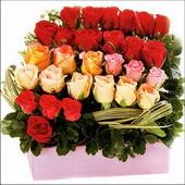 15 adet renkli gül ve cam   Aksaray çiçekçi mağazası
