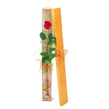 ince  kutuda  1  gül   Aksaray çiçek yolla