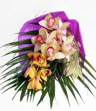 Aksaray cicekciler , cicek siparisi  1 adet dal orkide buket halinde sunulmakta