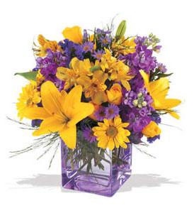 Aksaray çiçek mağazası , çiçekçi adresleri  cam içerisinde kir çiçekleri demeti