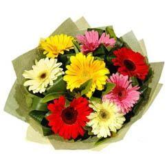 9 adet karisik gerbera demeti  Aksaray çiçek mağazası , çiçekçi adresleri