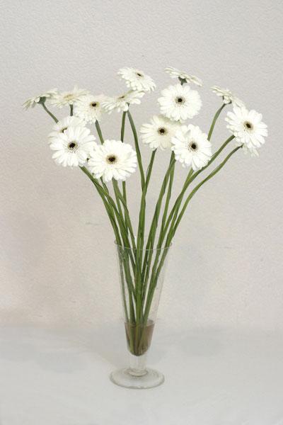 Aksaray çiçek mağazası , çiçekçi adresleri  cam vazo içerisinde 17 adet sade gerbera