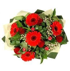 Aksaray ucuz çiçek gönder   5 adet kirmizi gül 5 adet gerbera demeti