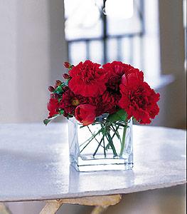 Aksaray ucuz çiçek gönder  kirmizinin sihri cam içinde görsel sade çiçekler