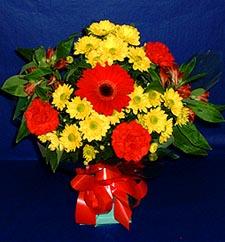 Aksaray ucuz çiçek gönder  sade hos orta boy karisik demet çiçek