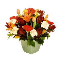 mevsim çiçeklerinden karma aranjman  Aksaray çiçek yolla , çiçek gönder , çiçekçi