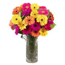 KARISIK GERBERALARDAN CAM VAZO TANZIMI  Aksaray güvenli kaliteli hızlı çiçek