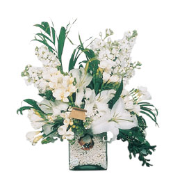 Aksaray internetten çiçek siparişi  sadece beyazlardan olusmus mevsim cam yada mika tanzim