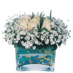 Aksaray çiçekçi mağazası  mika yada cam içerisinde 7 adet beyaz gül