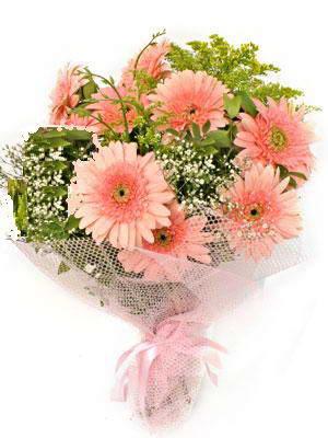 Aksaray çiçek satışı  11 adet gerbera çiçegi buketi