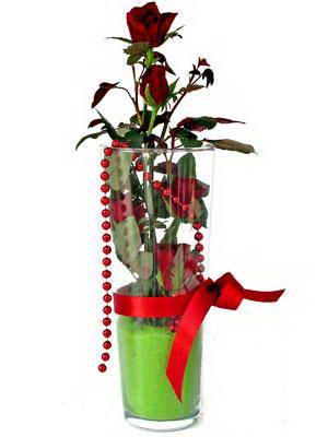 Aksaray online çiçek gönderme sipariş  Cam yada mika içerisinde 9 adet kirmizi gül - sevdiklerinize özel