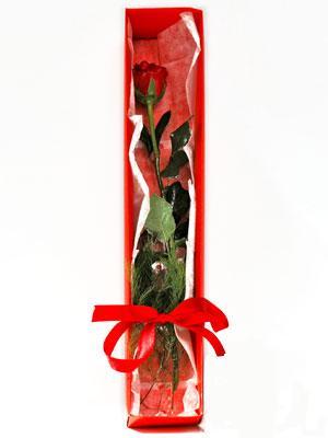 Aksaray yurtiçi ve yurtdışı çiçek siparişi  1 adet kutuda gül