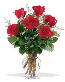 Aksaray çiçek gönderme sitemiz güvenlidir  7 adet kirmizi gül cam yada mika vazoda sevenlere