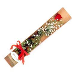 Aksaray çiçek , çiçekçi , çiçekçilik  Kutuda tek 1 adet kirmizi gül çiçegi