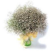 Aksaray çiçek mağazası , çiçekçi adresleri  cam yada mika vazo içerisinde cipsofilya demeti