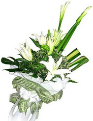 Aksaray güvenli kaliteli hızlı çiçek  3 dal kazablanka çiçegi ve yesillikler