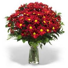 Aksaray çiçek yolla  Kir çiçekleri cam yada mika vazo içinde