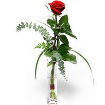 Aksaray 14 şubat sevgililer günü çiçek  Sana deger veriyorum bir adet gül cam yada mika vazoda