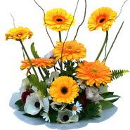 camda gerbera ve mis kokulu kir çiçekleri  Aksaray çiçekçi telefonları