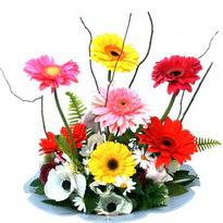 Aksaray hediye çiçek yolla  camda gerbera ve mis kokulu kir çiçekleri