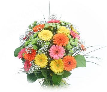 13 adet gerbera çiçegi buketi  Aksaray online çiçek gönderme sipariş