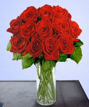 Anneme 12 adet cam içerisinde kirmizi gül  Aksaray çiçek siparişi sitesi