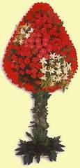 Aksaray çiçek gönderme  dügün açilis çiçekleri  Aksaray çiçek online çiçek siparişi