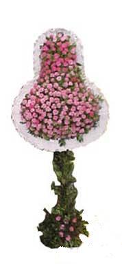 Aksaray ucuz çiçek gönder  dügün açilis çiçekleri  Aksaray internetten çiçek siparişi