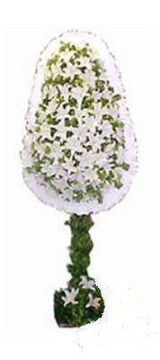 Aksaray çiçek siparişi sitesi  nikah , dügün , açilis çiçek modeli  Aksaray online çiçek gönderme sipariş