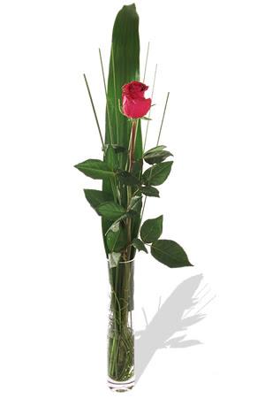 1 adet cam vazo içerisinde kirmizi gül  Aksaray çiçek , çiçekçi , çiçekçilik