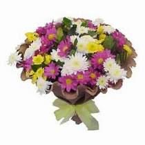 Aksaray çiçekçi telefonları  Mevsim kir çiçegi demeti