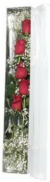 Aksaray çiçek siparişi sitesi   5 adet gülden kutu güller