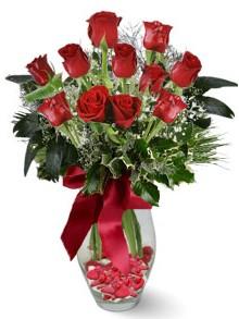 9 adet gül  Aksaray internetten çiçek satışı  kirmizi gül