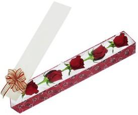 Aksaray internetten çiçek satışı  kutu içerisinde 5 adet kirmizi gül
