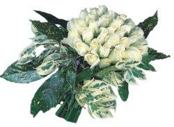 Aksaray internetten çiçek siparişi  9 Beyaz gül Özel kisiler için