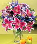 Aksaray çiçek mağazası , çiçekçi adresleri  Sevgi bahçesi Özel  bir tercih